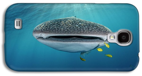 Whale Shark And Golden Trevally Galaxy S4 Case by Pete Oxford