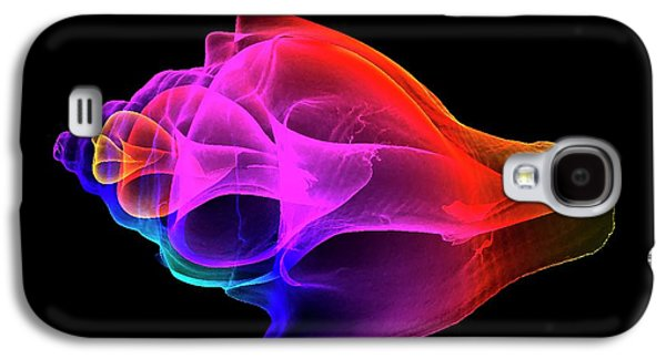 Whelk Galaxy S4 Case by K H Fung
