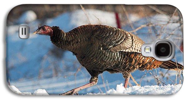 Wild Turkey Galaxy S4 Case