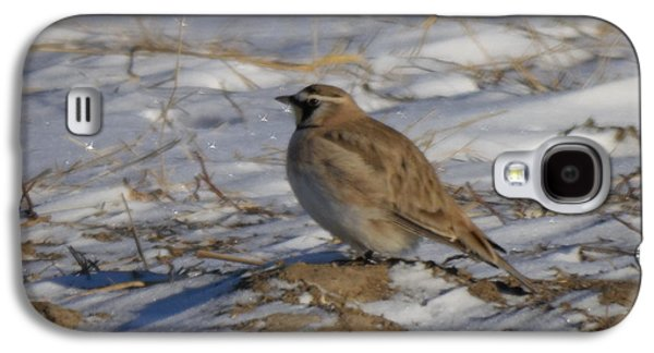 Winter Bird Galaxy S4 Case by Jeff Swan