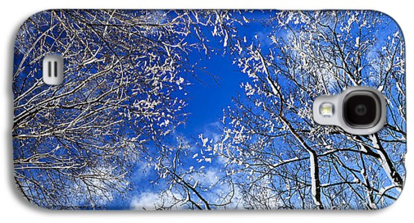 Winter Trees And Blue Sky Galaxy S4 Case by Elena Elisseeva