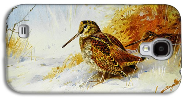Woodcock Galaxy S4 Case - Winter Woodcock  by Celestial Images
