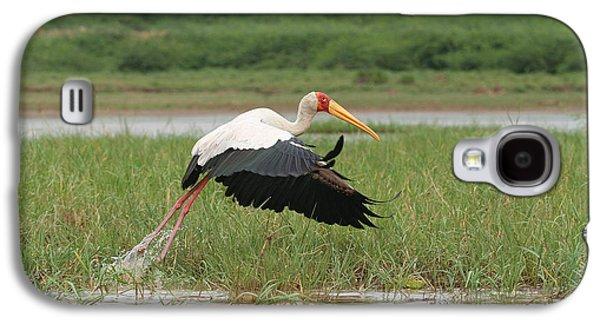 Yellow-billed Stork Mycteria Ibis Galaxy S4 Case