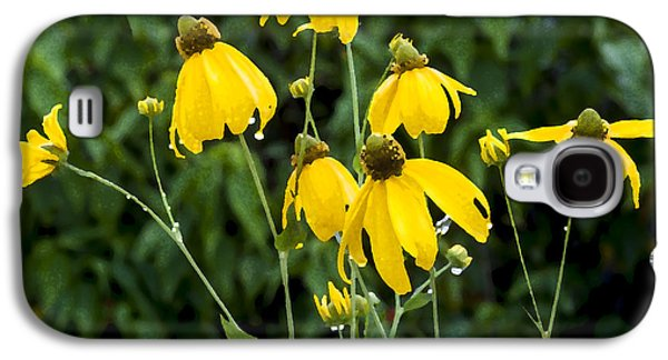 Yellow Cone Flowers Rudbeckia Galaxy S4 Case by Rich Franco