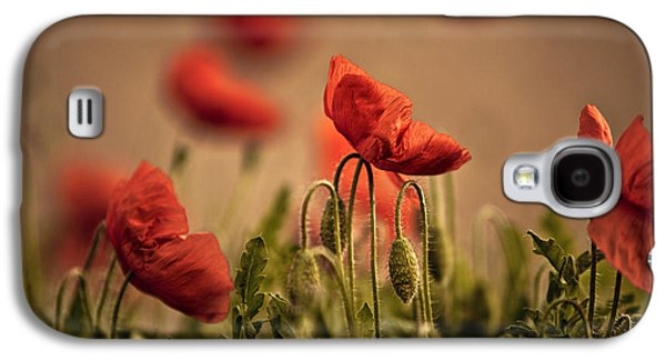 Summer Poppy Galaxy S4 Case by Nailia Schwarz