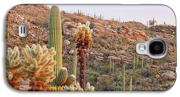 Usa, Arizona, Tucson Galaxy S4 Case