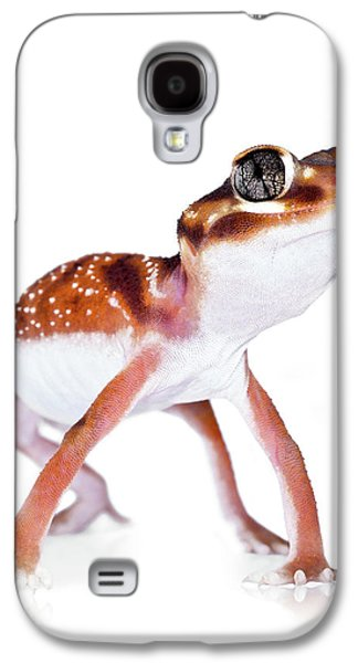 Australian Reptiles On White Galaxy S4 Case