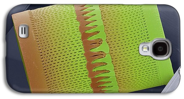 Diatom Galaxy S4 Case by Steve Gschmeissner