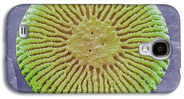 Diatom Galaxy S4 Case