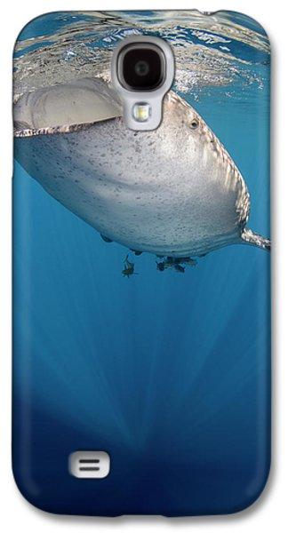 Whale Shark, Cenderawasih Bay, West Galaxy S4 Case by Pete Oxford