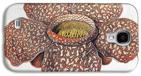 1820 First Description Rafflesia Flower Galaxy S4 Case