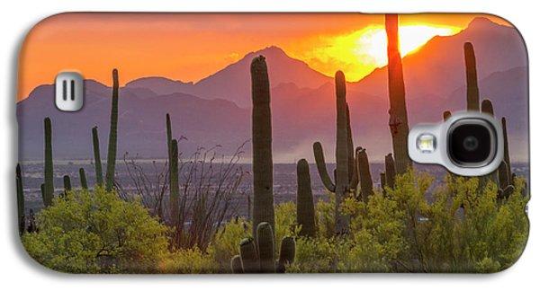 Usa, Arizona, Saguaro National Park Galaxy S4 Case by Jaynes Gallery