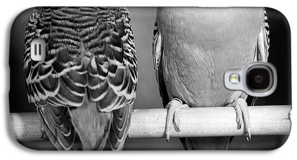 1960s Pair Of Parakeets Perched Galaxy S4 Case