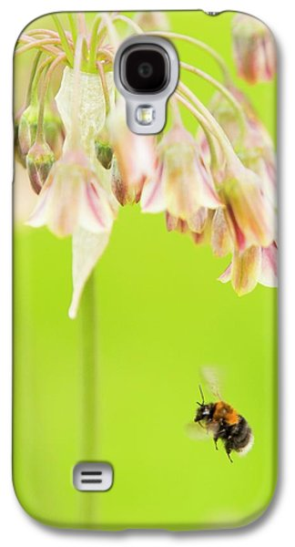 Bumble Bee Gathering Pollen Galaxy S4 Case