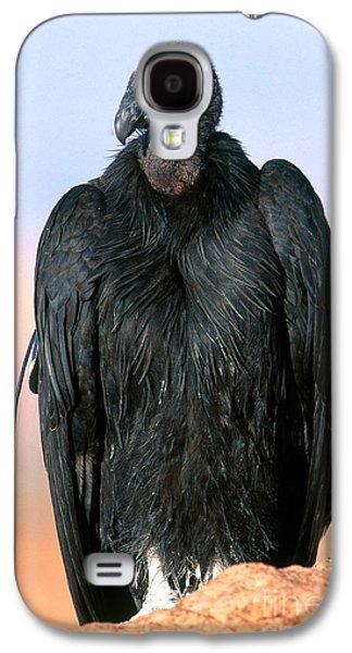 California Condor Galaxy S4 Case by Art Wolfe