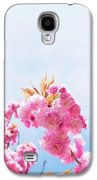 Cherry Blossom Galaxy S4 Case by Wladimir Bulgar