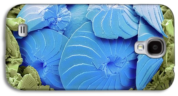 Coccolithophore Shell Galaxy S4 Case by Steve Gschmeissner