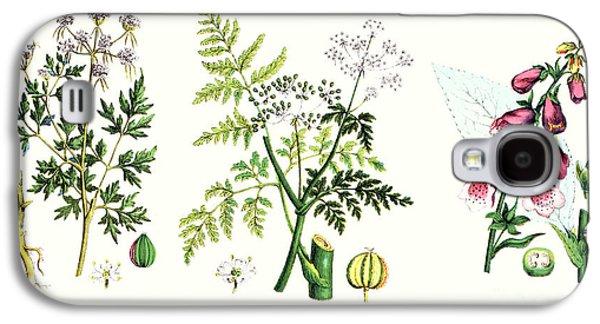Common Poisonous Plants Galaxy S4 Case