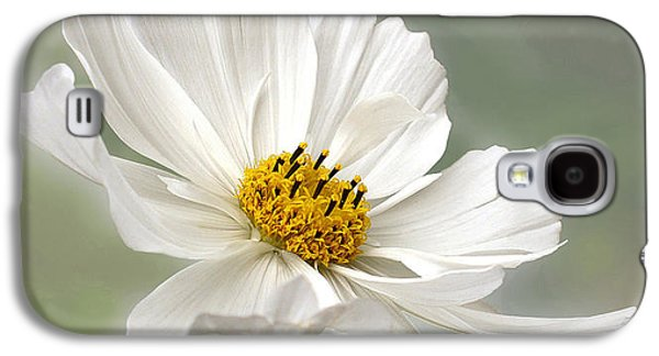 Cosmos Flower In White Galaxy S4 Case