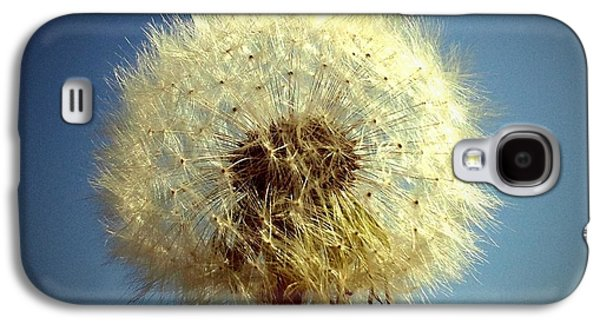 Sky Galaxy S4 Case - Dandelion And Blue Sky by Matthias Hauser