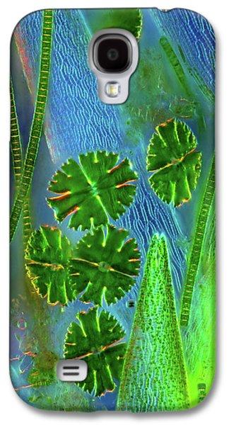 Desmids On Sphagnum Moss Galaxy S4 Case by Marek Mis