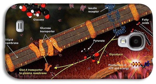 Effect Of Insulin Galaxy S4 Case