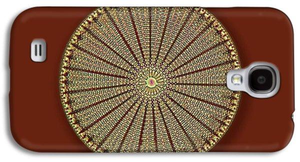Fossil Diatom Galaxy S4 Case by Frank Fox