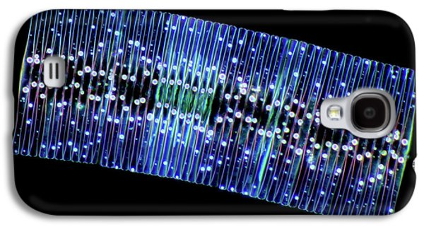 Fragilaria Diatoms Galaxy S4 Case by Marek Mis
