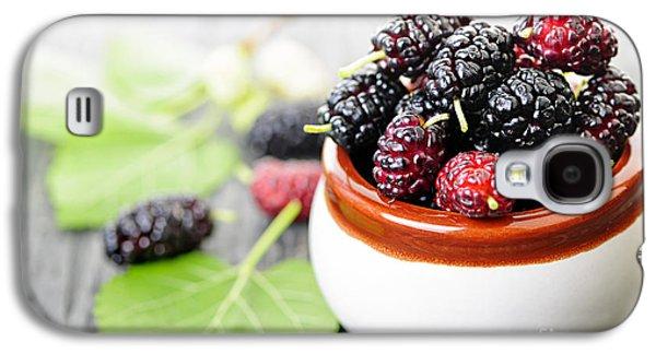 Fresh Mulberries Galaxy S4 Case by Elena Elisseeva