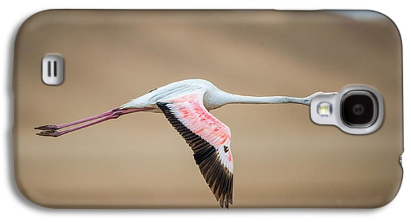 Greater Flamingo Phoenicopterus Roseus Galaxy S4 Case by Panoramic Images