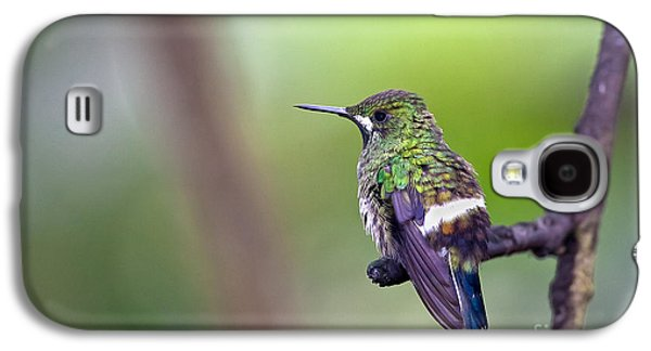 Green Thorntail Galaxy S4 Case by Jean-Luc Baron