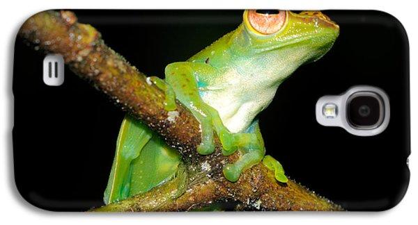 Jade Tree Frog, Malaysia Galaxy S4 Case by Fletcher & Baylis