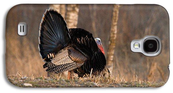 Male Eastern Wild Turkey Galaxy S4 Case by Linda Freshwaters Arndt