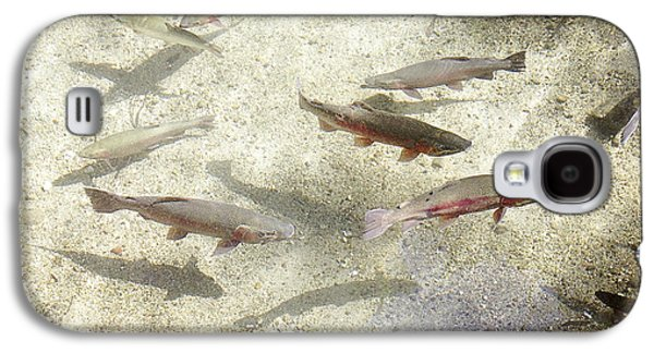 Rainbow Trout Galaxy S4 Case by Les Cunliffe