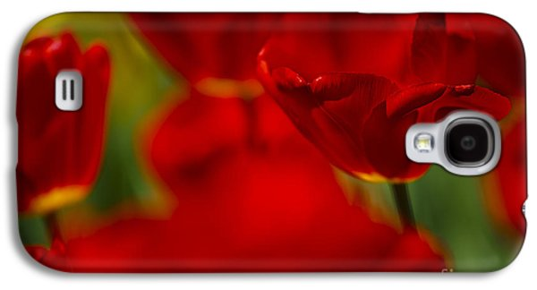 Tulip Galaxy S4 Case - Red And Yellow Tulips by Nailia Schwarz