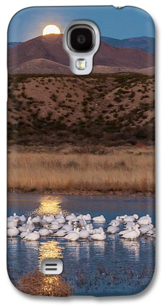 Usa, New Mexico, Bosque Del Apache Galaxy S4 Case by Jaynes Gallery