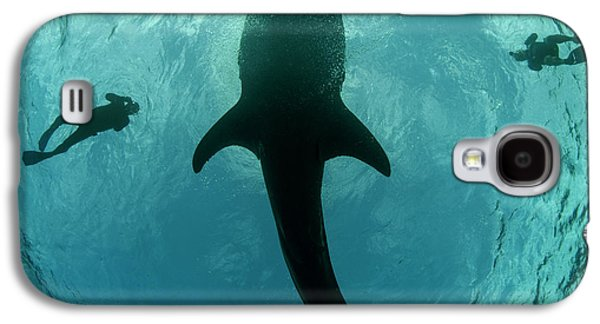 Whale Shark And Tourist Galaxy S4 Case