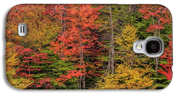 Usa, New York, Adirondack Mountains Galaxy S4 Case by Jaynes Gallery