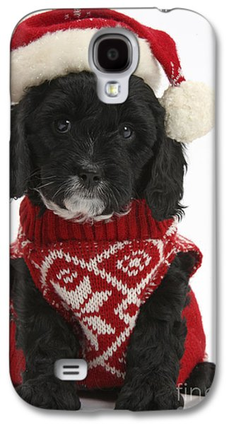 Cavapoo Puppy In Christmas Hat Galaxy S4 Case by Mark Taylor
