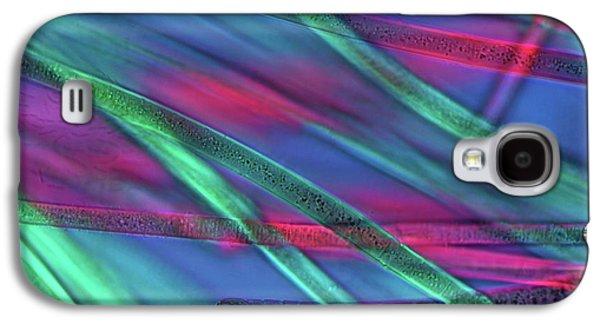 Cyanobacteria Galaxy S4 Case