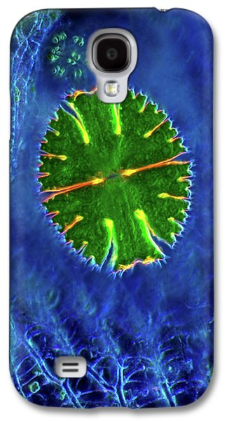 Desmid And Sphagnum Moss Galaxy S4 Case by Marek Mis