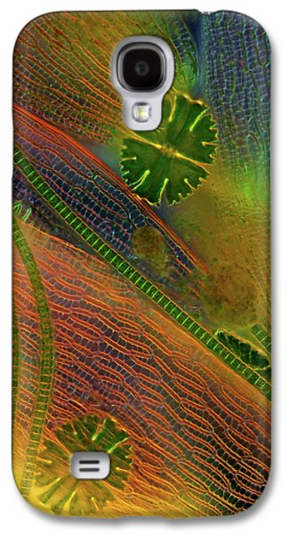 Desmids And Sphagnum Moss Galaxy S4 Case