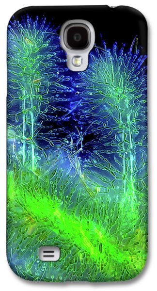 Diatoms On Red Algae Galaxy S4 Case