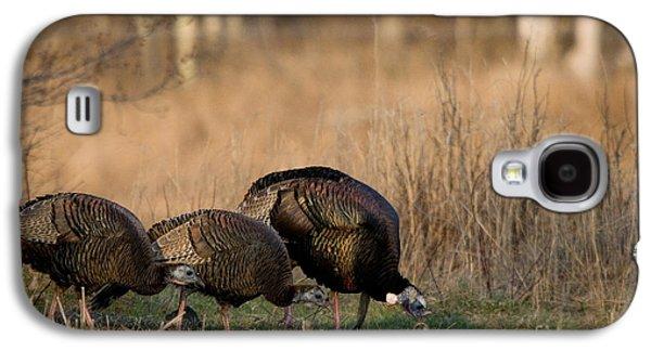 Eastern Wild Turkeys Galaxy S4 Case by Linda Freshwaters Arndt
