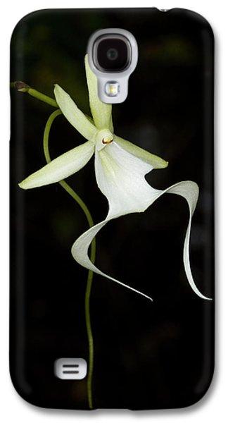 Ghost Orchid In Bloom, Polyrrhiza Galaxy S4 Case by Maresa Pryor