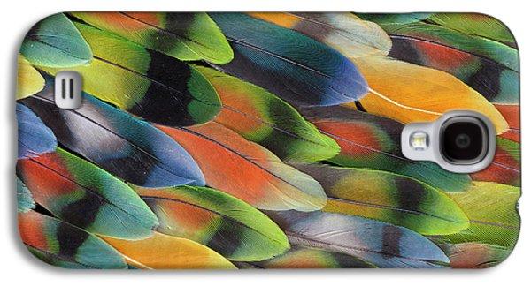 Lovebird Galaxy S4 Case - Lovebird Tail Feather Pattern And Design by Darrell Gulin
