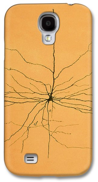 Pyramidal Cell In Cerebral Cortex, Cajal Galaxy S4 Case by Science Source
