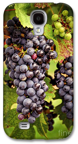 Red Grapes Galaxy S4 Case by Elena Elisseeva