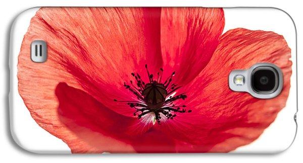 Red Poppy Flower Galaxy S4 Case by Elena Elisseeva