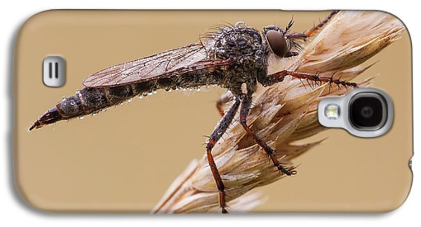 Robber Fly Galaxy S4 Case